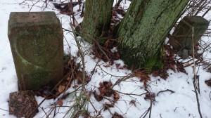 Cisowy 2 zagadkowe groby zserduszkiem 2