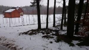 Cisowy nowy drewniany dom