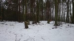 Cisowy stary cmentarz 1