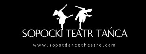 STT logo black